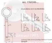 6.) Art.176/CH8-